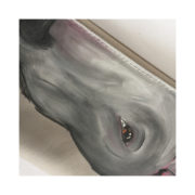 bullterrier-pung_one_3_00037