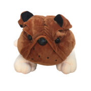engelsk-bulldog1_00043