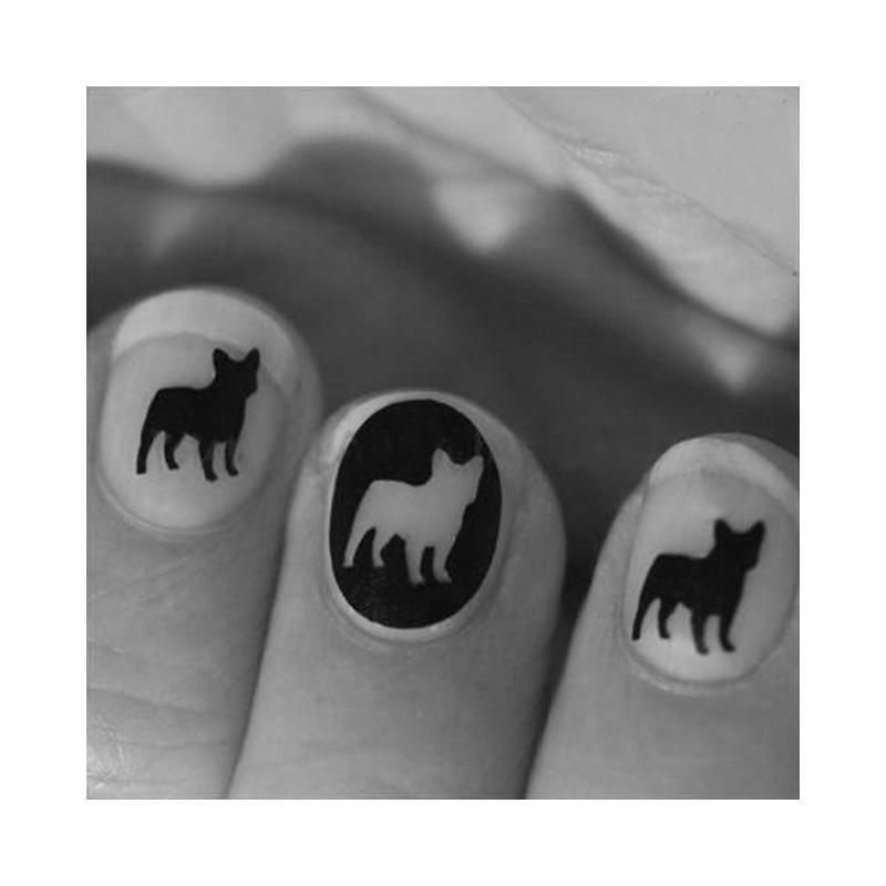 fransk-bulldog-negle-2_00017