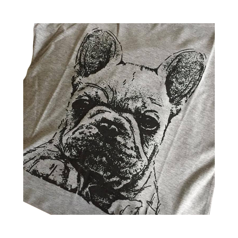 fransk-bulldog_1_00061