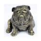 Engelsk Bulldog sidden figur