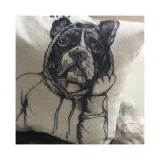 Fransk Bulldog_2_000114